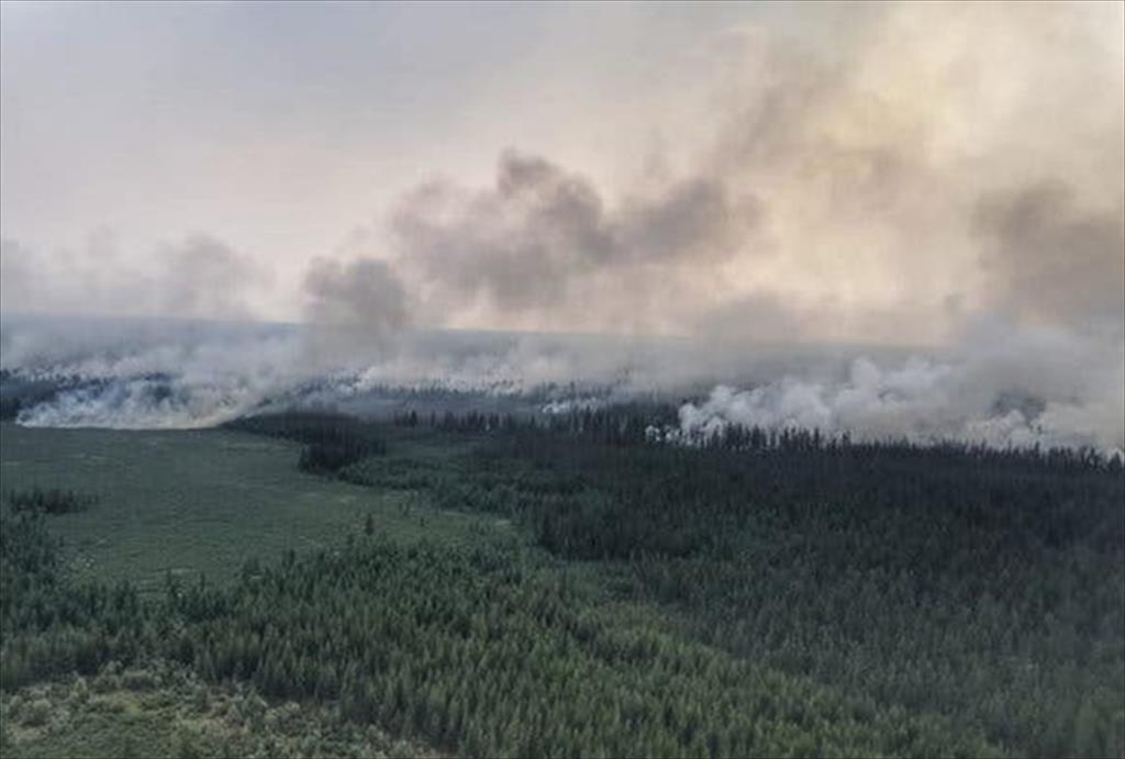 Recent huge wildfires in the Siberian region
