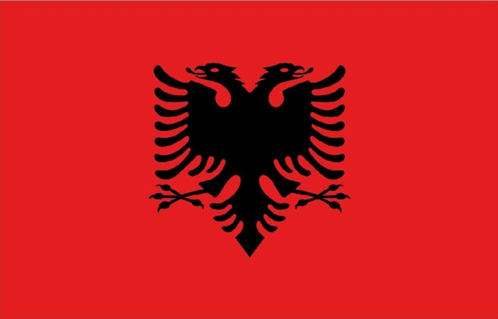 Solidarity message to the Republic of Albania