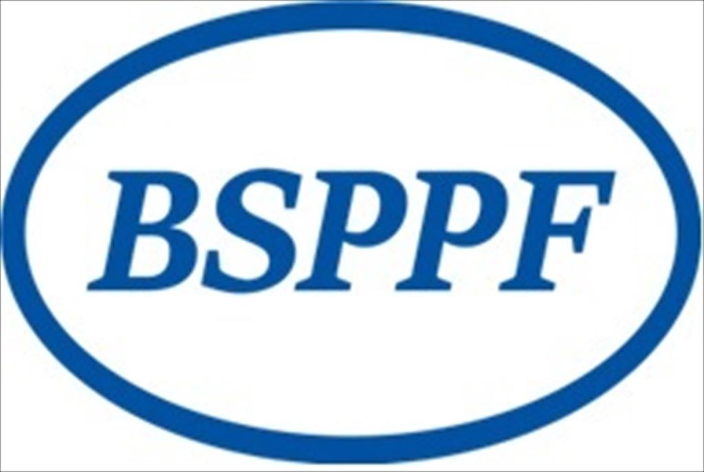 Annual Meeting of the Steering Committee of the Black Sea Project Promotion Facility (BSPPF)